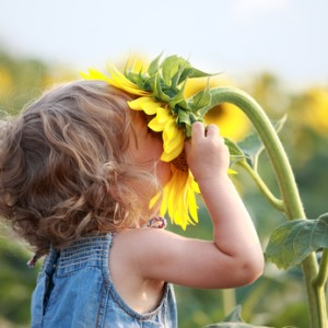 girl smelling sunflower happiness